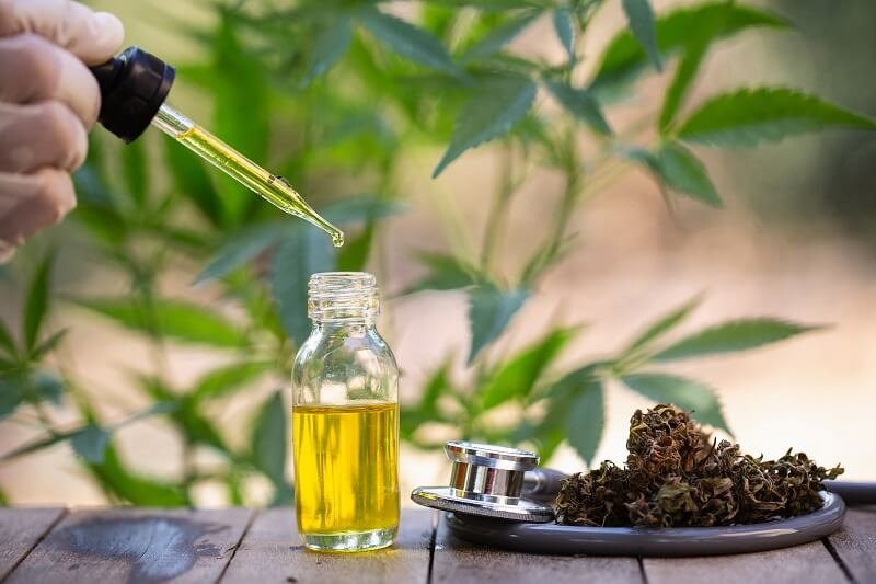 How-To-Become-A-CBD-Oil-Distributor-In-South-Africa